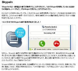 skypein.jpg